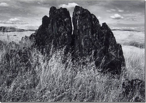 Ansel Adams_Metamorphic Rock and Summer Grass, Foothills, Sierra Nevada