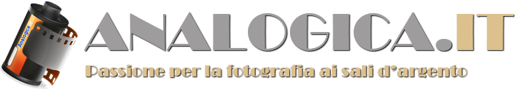 logo analogica grey - Forum