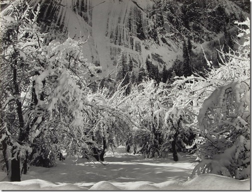 Ansel Adams_Snow in Orchard, Yosemite Valley